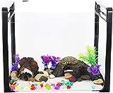 N\A AY Tortuga Tanque Nivel de Principiante Aquarium Goldfish Tanque Pequeño Tanque Ecológico Desktop Fish Tank Aquarium Mini Sala Small Creative Fish Tank Office Mini