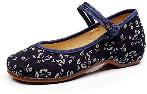Lazutom Vintage Chinese Style Women Embroidered Shoes Mary Jane Qipao Dress Shoes (EU 37, Blue)
