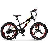 HUAQINEI Bici per Bambini da 20 Pollici con Ruote Mountain Mountain Bike da Ragazzo di 9-14 Anni M con parafango e Supporto
