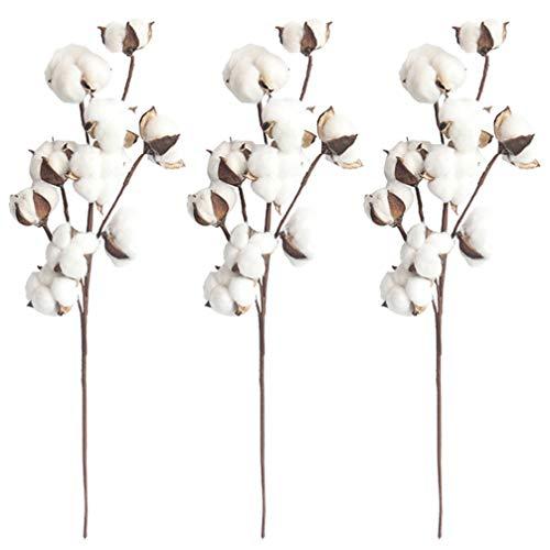 EXCEART Naturalna biała bawełna łodygi suszone gałązka kwiatowa dekoracja 10 głowic suszona bawełna łodygi symulacja kwiat na jesień aranżacje dom wiejski styl antyczny kwiatowy meble ślub Boże Narodzenie 3 szt