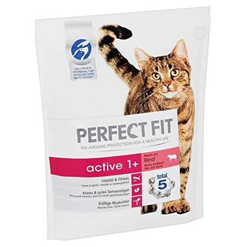 PERFECT FIT Katzenfutter Trockenfutter Active reich an Rind, 1.4 kg