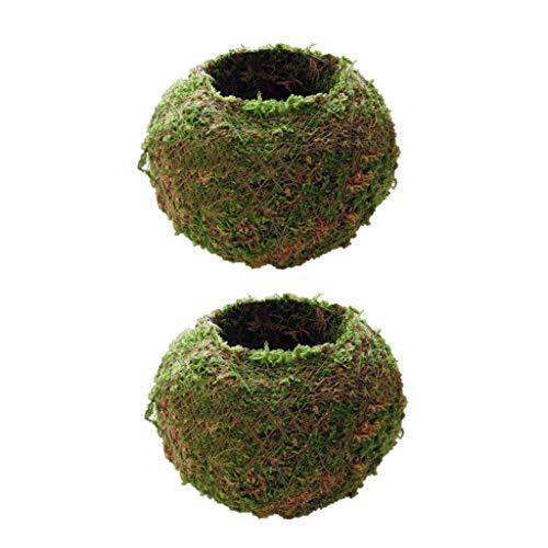 Baoblaze 4x Bonsai Creativo de Maceta con Bola de Musgo