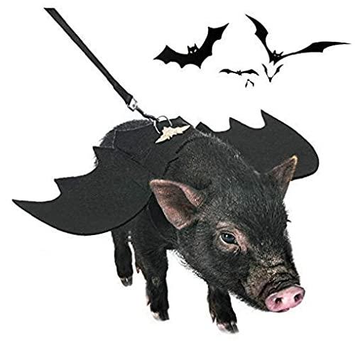 Costume d'animal De Compagnie Halloween, Costume De...