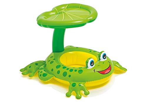 Product Image of the Intex Recreation Froggy