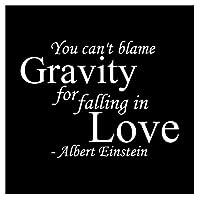 iBy アイバイ ウォールステッカー アインシュタイン 名言 白 マット You can't blame gravity for falling in love 日本語説明書付