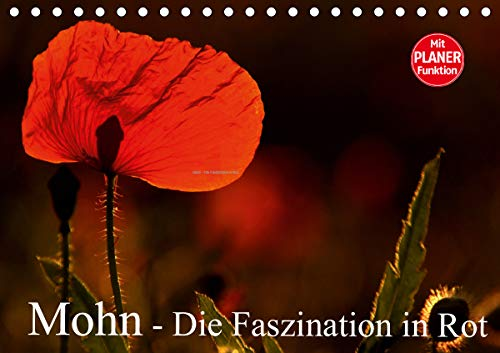 Mohn - Die Faszination in Rot (Tischkalender 2021 DIN A5 quer)
