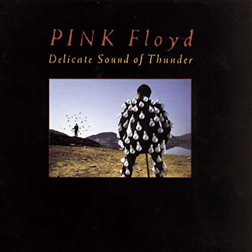 Delicate Sound Of Thunder -  Pink Floyd, Audio CD