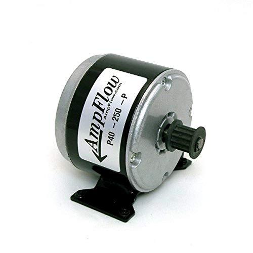 AmpFlow P40-250-P Brushed Electric Motor, 250W, 12V, 24V or 36 VDC, 3400 RPM