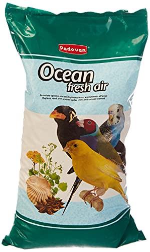 Padovan - Sabbia oceanica per Uccelli all'anice -depolverizzata e sterilizzata - 5 kg