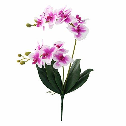 JAROWN Flores artificiales de tacto real, orquídeas de Phaleanopsis, hojas, ramas para decoración de jardín