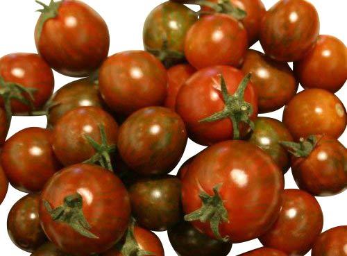 Tomate -Black Zebra Cherry- 10 Samen ***NEW***