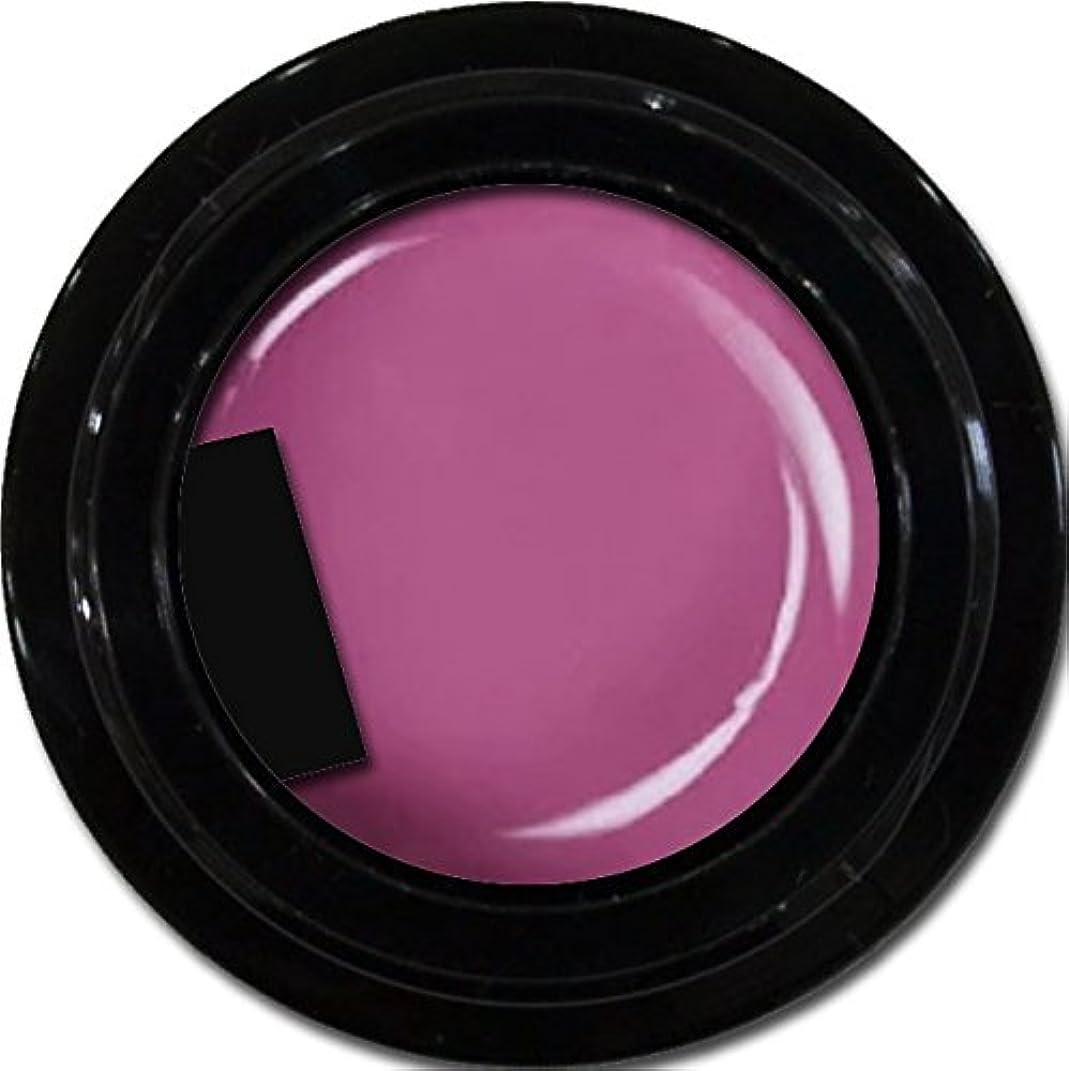 製作変装したコンテンポラリーカラージェル enchant color gel M513 RubyViolet3g/ マットカラージェル M513ルビーヴァイオレット 3グラム