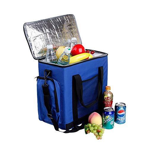 Mini nevera portátil, Refrigerador portátil de 14L Ice Car Enfriador AC /...