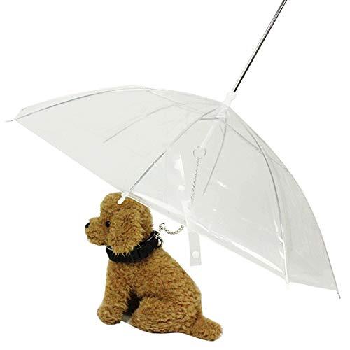Boodtag Transparent Hund Regenschirm Pet Umbrella Leine langem Griff Folding Umbrella für Hund Welpen Chihuahua