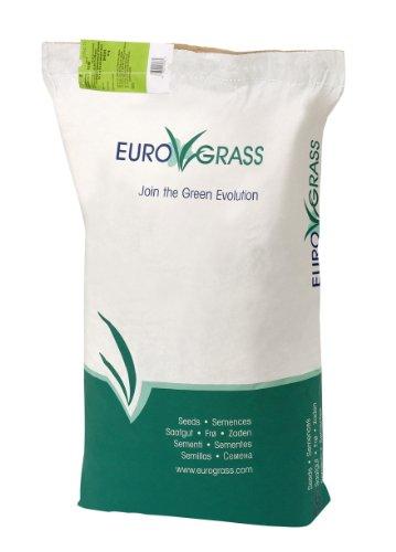 Rasensamen Grassamen EuroGrass Blumenwiese Klassik 10 kg - Die Blumen-Wiese