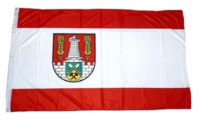Fahne / Flagge Salzgitter NEU 90 x 150 cm Fahnen