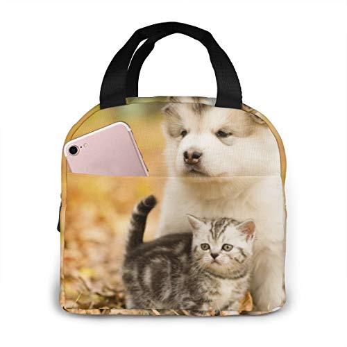 Kat en Hond Dagboek Unisex Draagbare Herbruikbare Waterdichte Thermische Isolatie Lunch Bag Picknick Bag Winkeltas Koelbox Eén maat Cat and Dog Diary