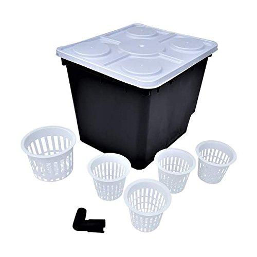 Dutch Bucket Set, 10 Pack, Bato Buckets by Bootstrap Farmer - Includes 50 Net Pots for Hydroponics Aquaponics