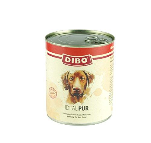 DIBO – PUR IDEAL (Rind/Geflügel), 800g-Dose, reine Fleischdosen aus frischem und natürlichem Fleisch! DIBO-Qualität