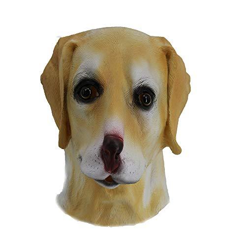 Hengyutoy Mask Máscara de Perro Golden o Labrador, para la Cabeza Entera,...