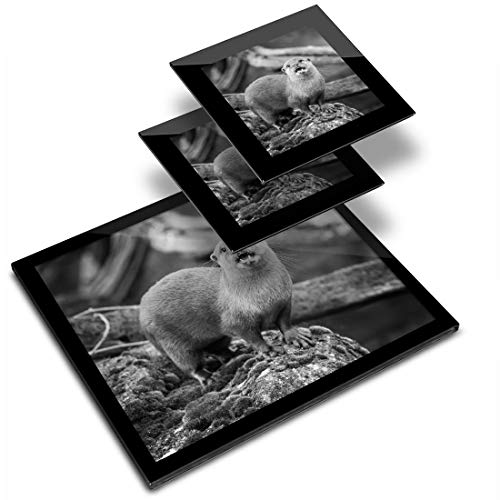 Destination - Mantel individual de vinilo (cristal, 20 x 25 cm, 2 posavasos de 10 x 10 cm), diseño de Otter Nature Wild Workplace/mesa/comedores/lavable, impermeable #37408
