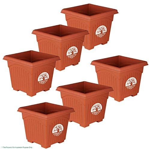 Green and Pure - Premium Quality 8 Inch Square Planter Pot | Plant Containers Pack of 6 - Brown Colour
