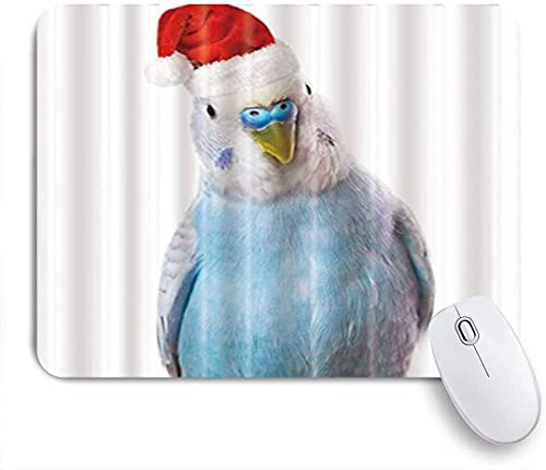 ZOMOY Gaming Mouse Pad Parrot with Red Christmas Hat White Backdrop 9.5'x7.9' Nonslip Rubber Backing Mousepad for Notebooks Computers Mouse Mats