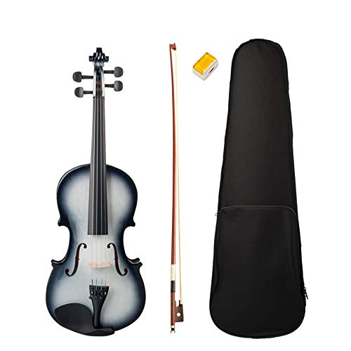 Dasing Violino 4/4 Finitura Lucida Violino 4/4 Violino per Principianti nel Bianco e Nero