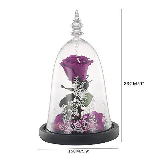 Peahog Beauty and The Beast Rose,Led Light String on Colorful Flower,Red Silk Rose and Led Light with Fallen Petals in Glass Dome on Wooden Base Valentines Day Anniversary Birthday Silk Flower Arrangements