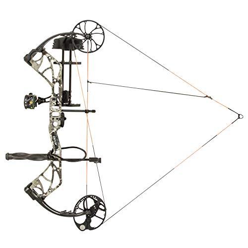 Bear Archery Species
