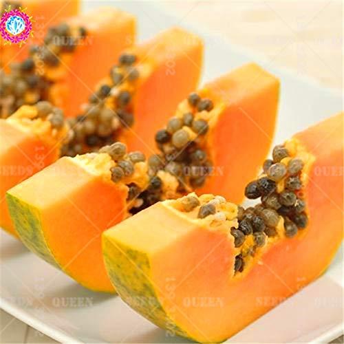 ShopMeeko Seeds:30pcs Giant Papaya Natural Fresh Fruit South America Organic Bonsai Plant for Spring Farm Supplies Easy to Grow