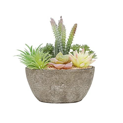 Piante Succulente Artificiali Realistiche Piante Grasse in Vaso Piante Grasse Finte per Soggiorno, Ufficio, Caffetteria, Negozio