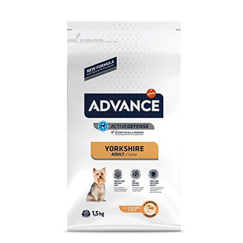 ADVANCE Yorkshire Adult - Croquettes pour Chien Yorkshire Terrier avec Poulet - 1,5kg