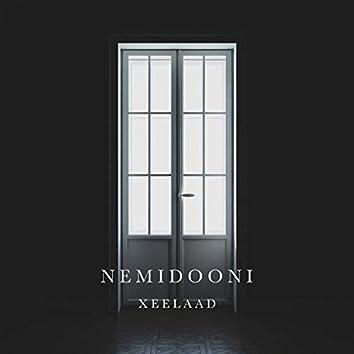 Nemidooni