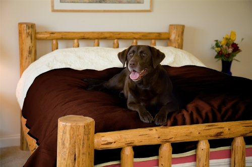 Mambe 100% Waterproof Pet Blanket Made in The USA
