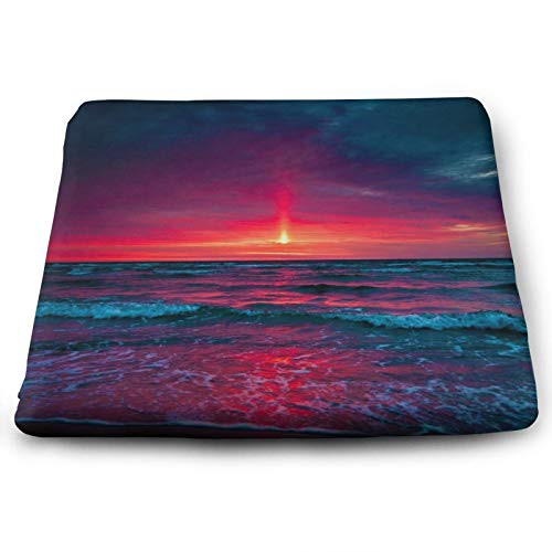 BQVIVYI Splendid Sea and Sun Square Chair Pads Back Cushions & Seat Cushions Home Decor Suitable for Furniture,Indoor and Outdoor