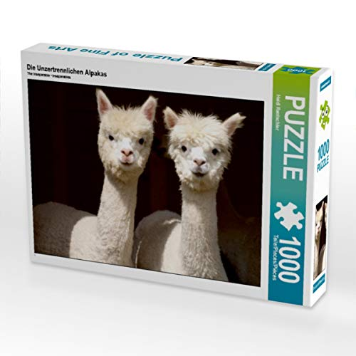 CALVENDO Puzzle Die Unzertrennlichen Alpakas 1000 Teile Lege-Größe 64 x 48 cm Foto-Puzzle Bild von Heidi Rentschler