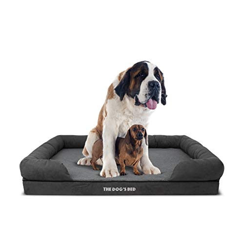 The Dog's Bed Orthopedic Premium Memory Foam Dog Bed XXL Grey Plush 51.5x39, Pain Relief: Arthritis, Hip & Elbow Dysplasia, Post Surgery, Lameness, Supportive, Calming, Waterproof Washable Cover