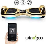 Windgoo Overboard Hover Scooter Board Bluetooth 6.5 Pouces, Self Balance Scooter Electrique Moteur...