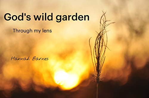 God's wild garden: Through my lens (Inspirational photo series)