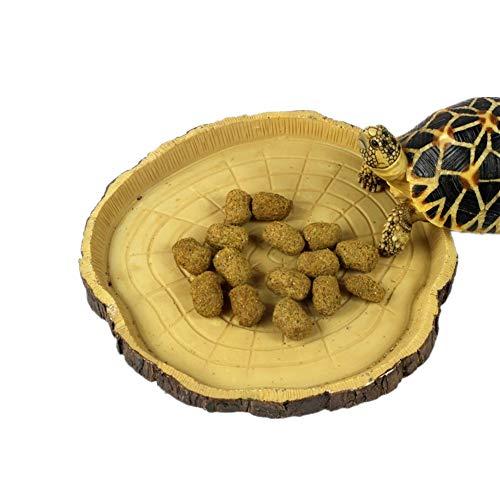 KICCOLY Trinkschale Flach für Amphibien Schildkröte Schüssel Schlangen Eidechse Gecko Näpfe Terrarium Aquarium Dekoration