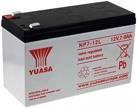 Yuasa - Batería plomo AGM NP7-12L 12V 7Ah YUASA - Batería(s)
