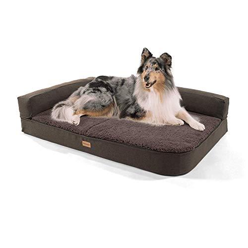 brunolie Odin großes Hundesofa in Dunkelbraun, waschbar, orthopädisch und rutschfest, Hundekissen mit Abnehmbarer Lehne, Größe L (120 x 80 x 12 cm)