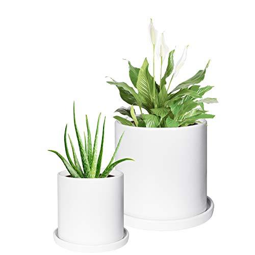Keramik-Übertopf für den Innenbereich mit Ablaufloch, Set mit 2 Blumentöpfen, Zylinderbehälter, 10,2 cm, 15,2 cm, moderne Sukkulenten, Pflanzgefäße für Zuhause, Garten, Dekoration matt weiß