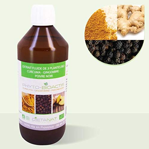 Curcuma Gingembre Poivre Noir bio 9-5-1-500ml Extrait de plantes fraiches