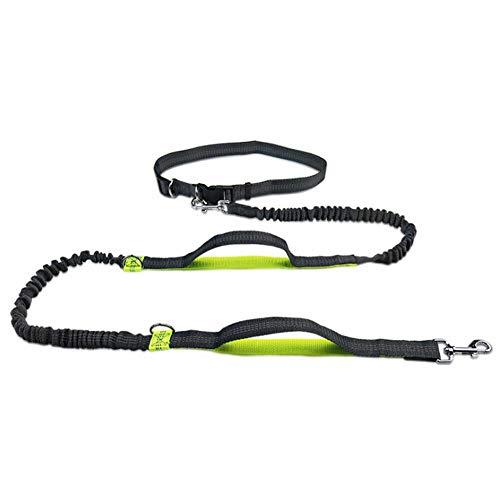 Perro Mascota Correr Caminar Entrenamiento Cuerda de tracción Cuerda de tracción Reflectante con elástico Manos Libres para Correr y Perro para Caminar Cuerda-Fluorescent_Green