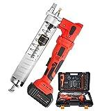 YGU Pistola engrasadora eléctrica inalámbrica de 24 V, Pistola engrasadora de Alta presión de 8000 PSI, Kit de Herramientas eléctricas de Capacidad 600CC (con Dos baterías de Litio de 2,7 Ah)