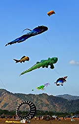Image: Kite Festival and International Kite Festival in Satun Province: The beauty of the kite. Bright colors floating in the sky (Thailand Festival Book 1), by Jessica Carter (Author). Publication Date: July 25, 2017