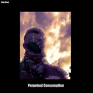 Perpetual Consumption