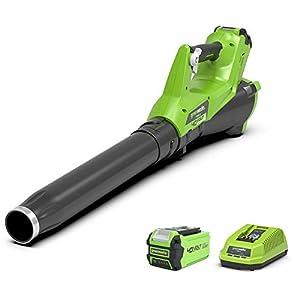 Greenworks 40 V Soplador axial de hojas alimentado por batería G40AB (Li-Ion 40V 177 km/h de velocidad de aire poderoso soplador axial con control de velocidad incluyendo batería y cargador)